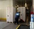 Sala de Inspeccion y Camara de Fumigacion 3
